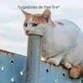 Digan quienes más son ese gato