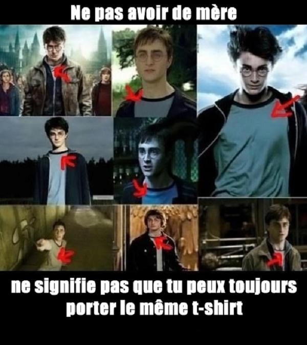 Harry plotteur et la branlette magique - meme