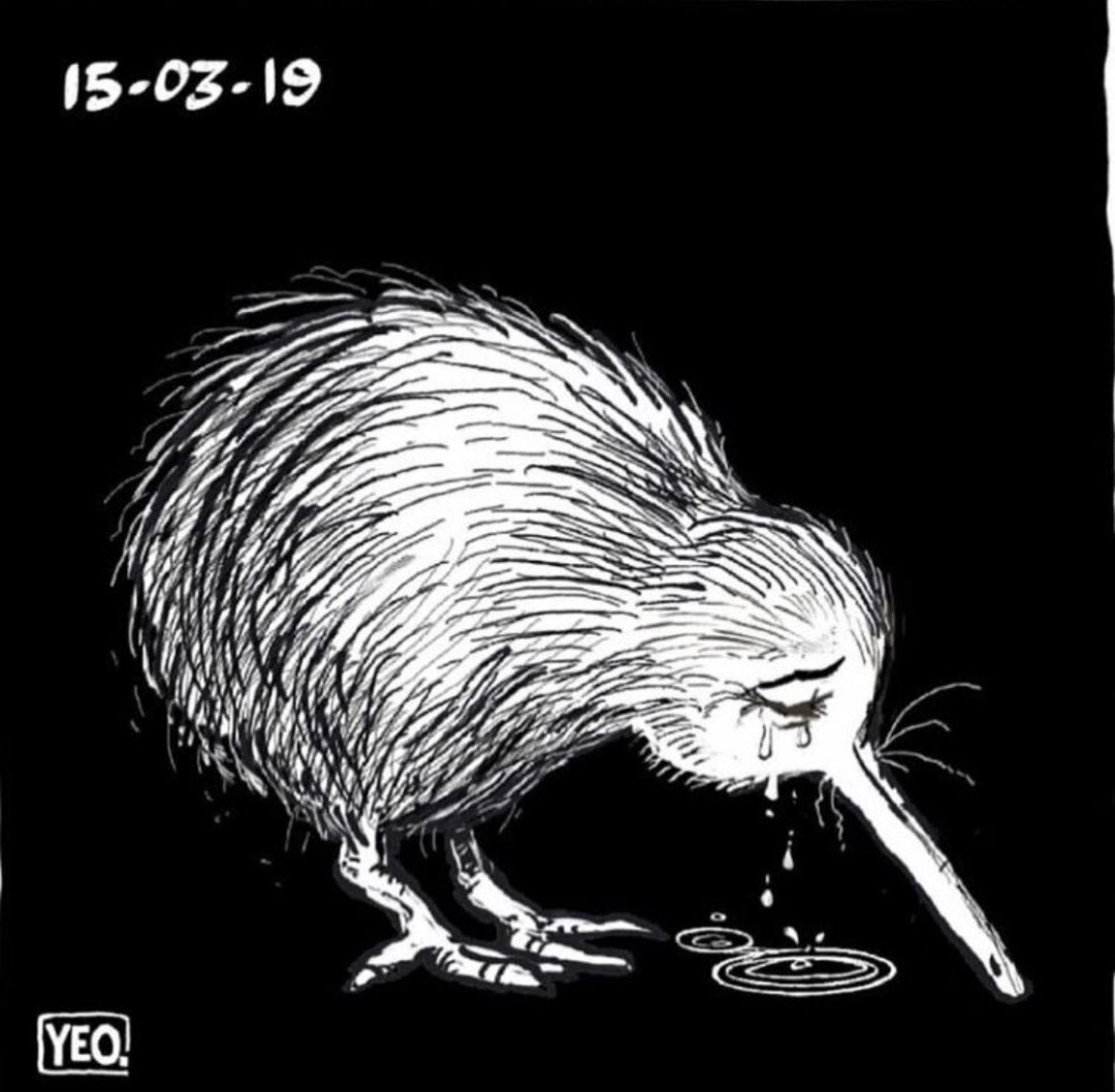 There was a mass shooting in my home country NZ, which most people concider to be the safest place on Earth. - meme