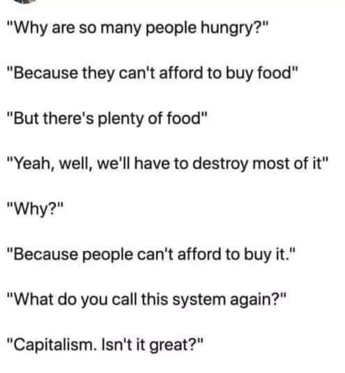 what a system - meme