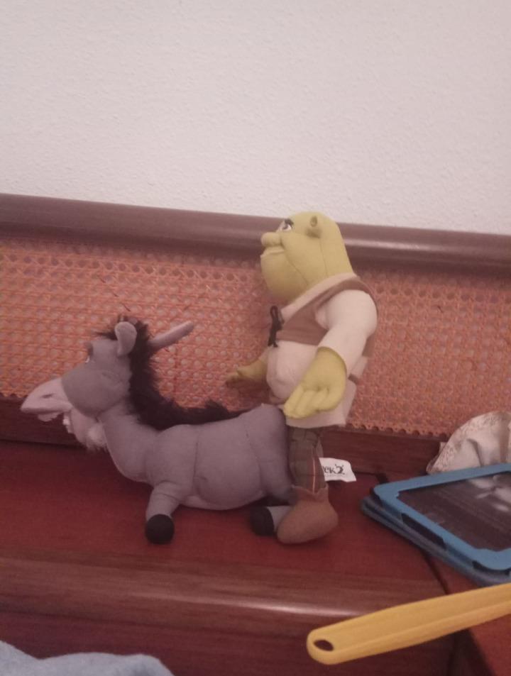 Shrek está reloco - meme