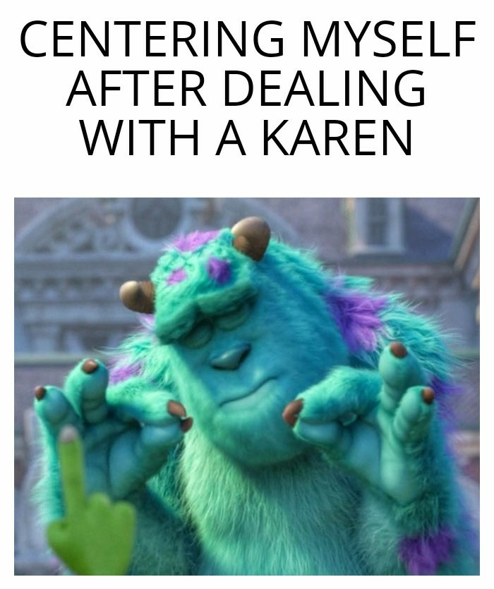 Another Karen Meme