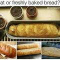 Cat or Bread?
