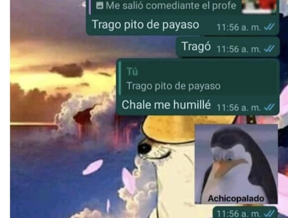 Chale se humillo - meme