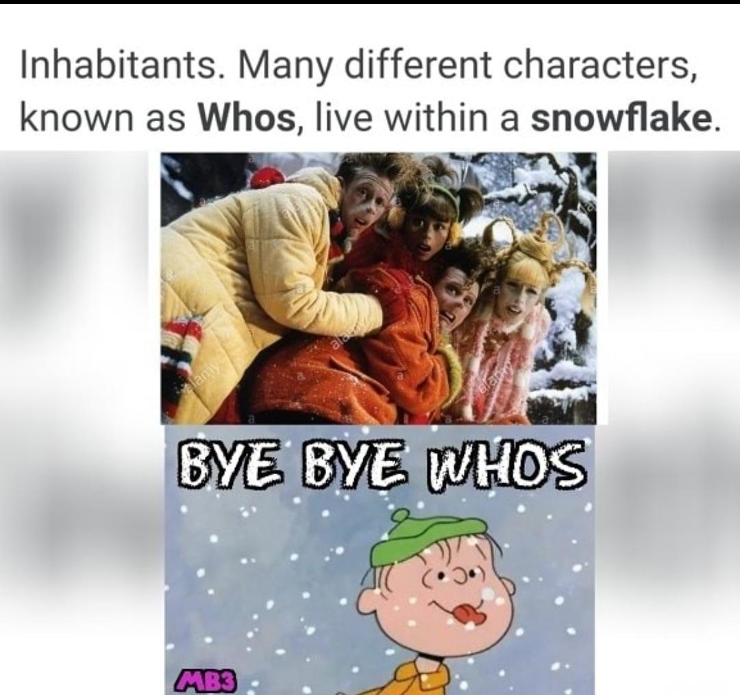 Who's on a Snowflake - meme