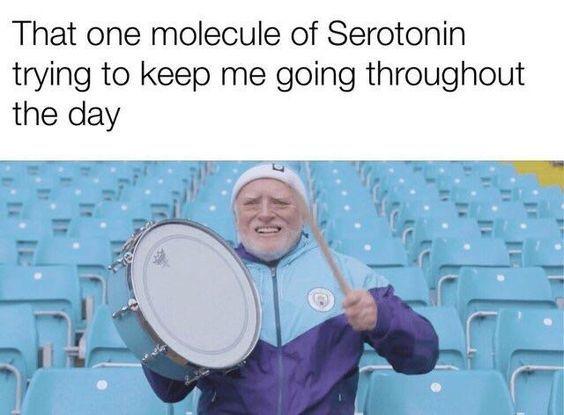 yay... - meme