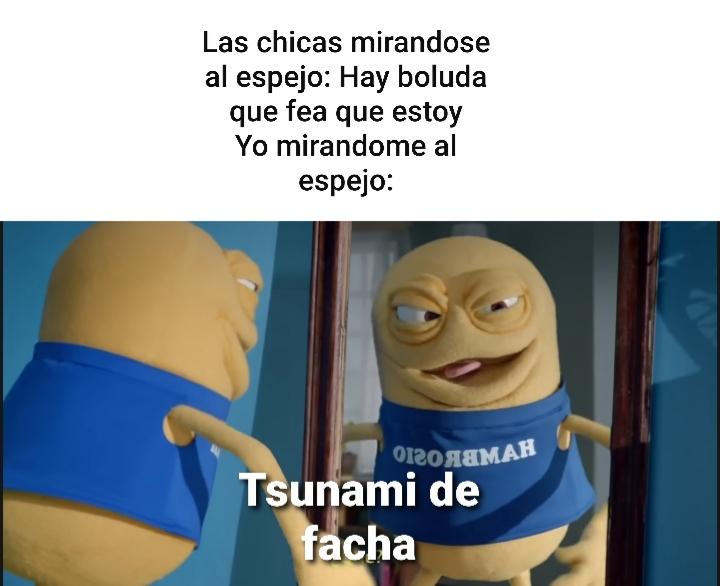 Tsunami de facha - meme