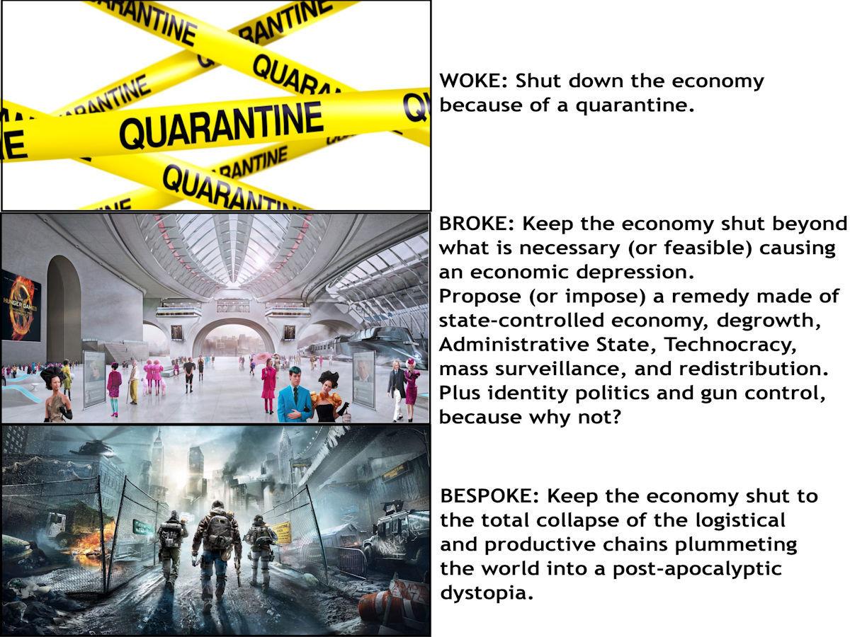 Pandemic Woke-broke-bespoke - meme