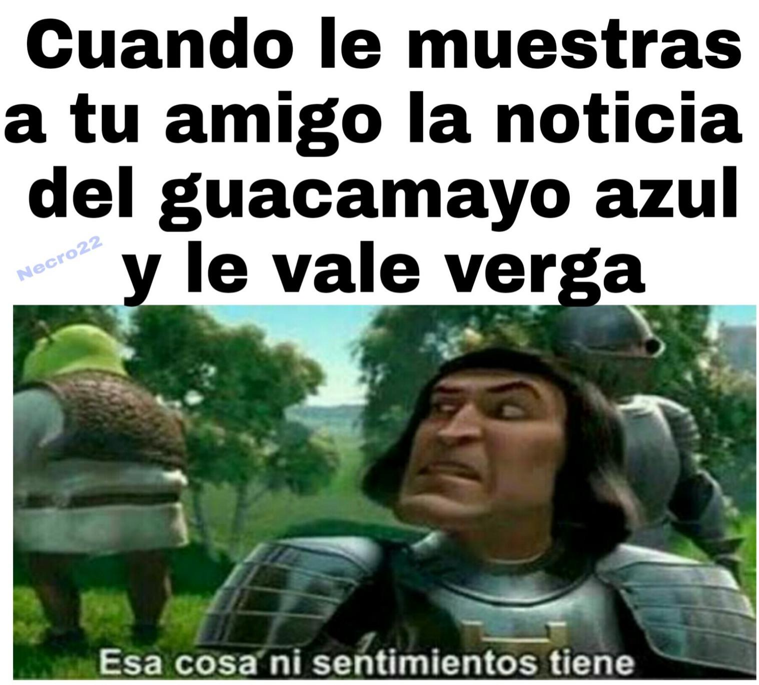 Si pasó :( - meme