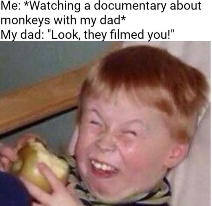 Dads - meme