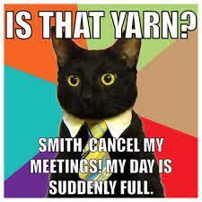 is that...yarn??? - meme