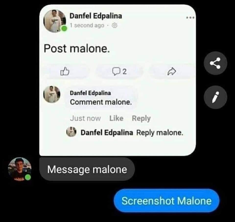 Post-ing Malone - meme