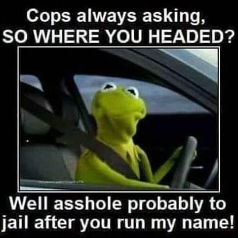 God damm cops!!!! - meme