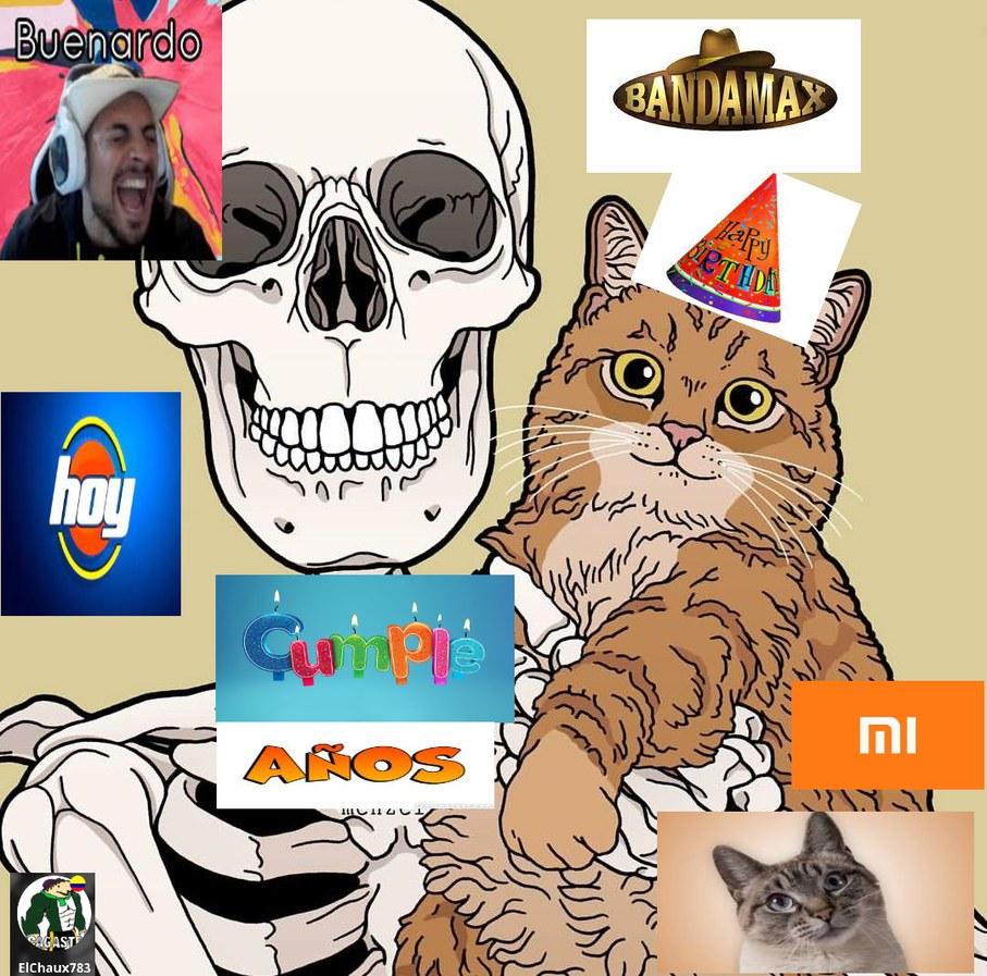 buenardo hoy cumple os mi gatoa - meme