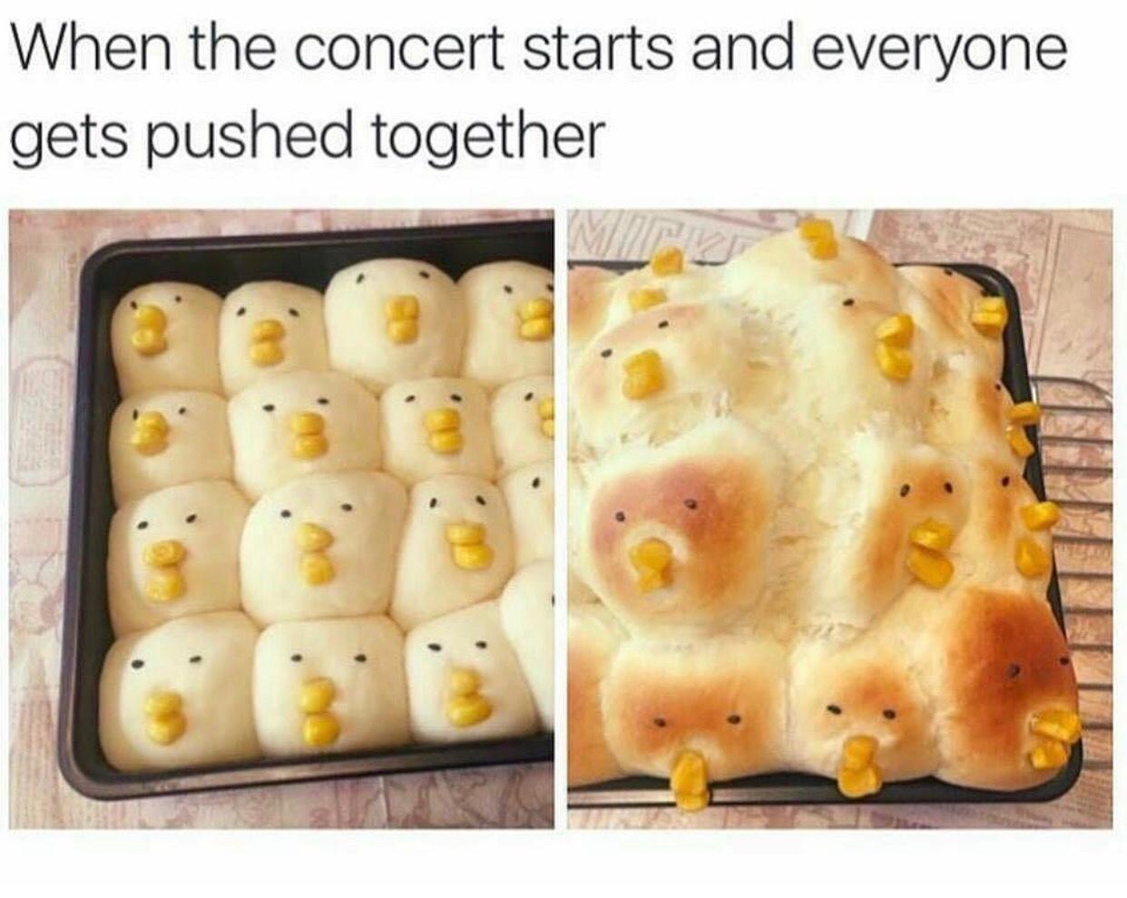 metal concerts - meme
