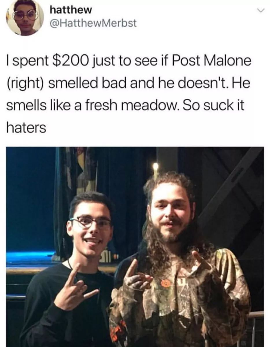 Glad he pointed out who Post Malone was. I couldn't tell. - meme