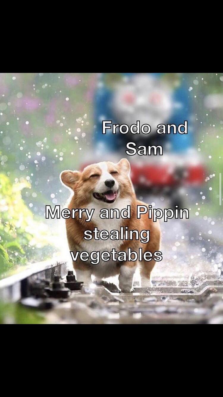 Lotr - meme