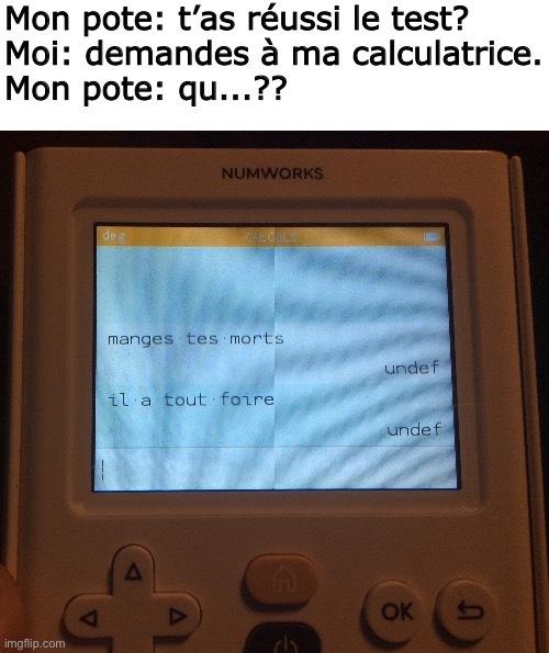 Ma calculatrice n'est pas censé faire ce trait au milieu :/ - meme