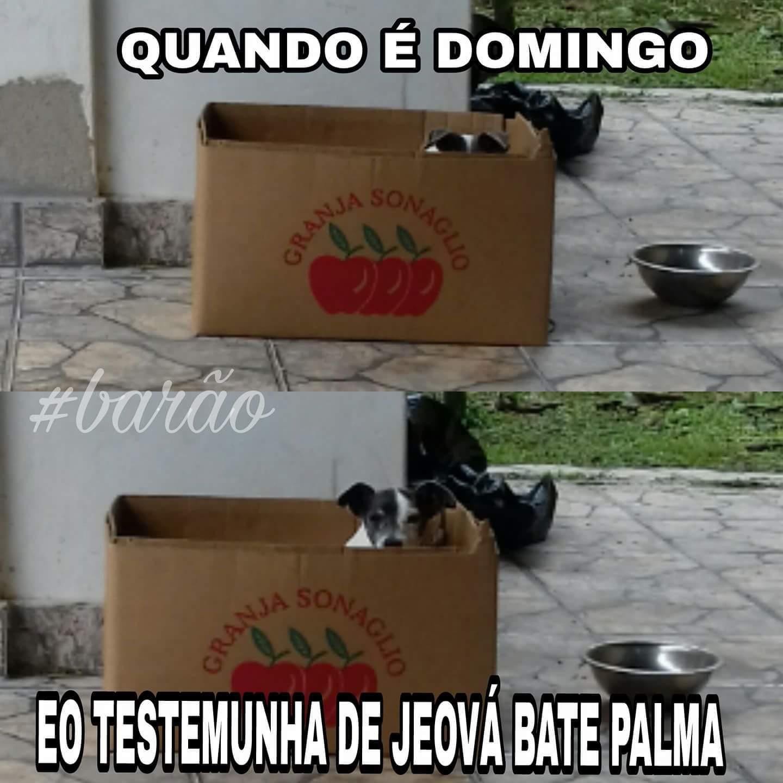 Domingo de manhã like Barão Zuero - meme