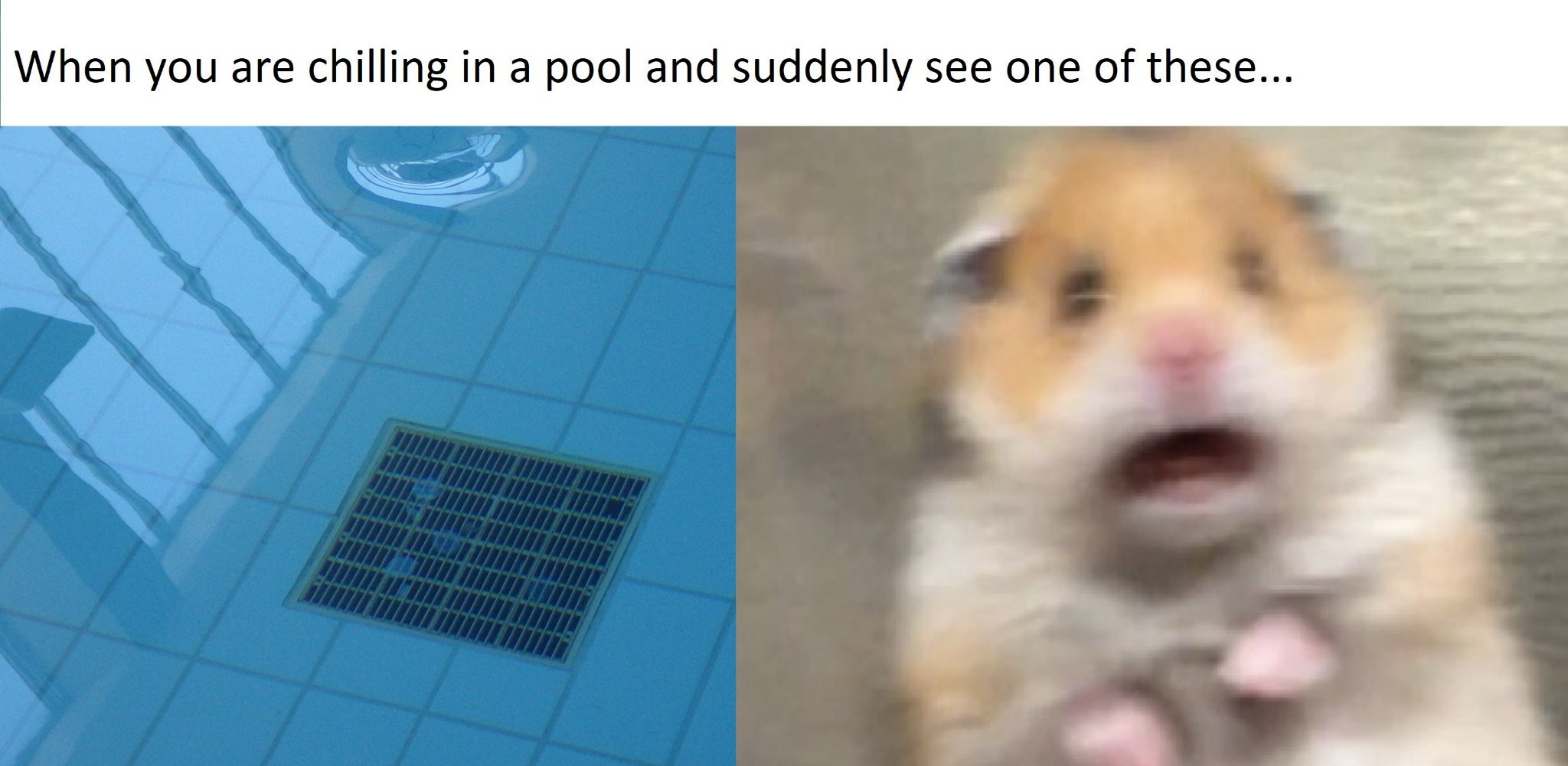 Pool drains... - meme