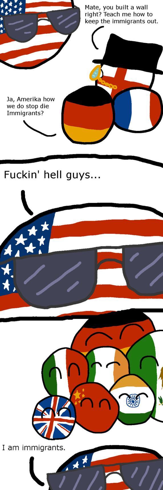 Immigration solutions - meme