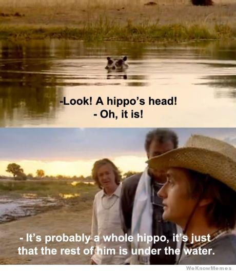 That's probably a whole hippo - meme