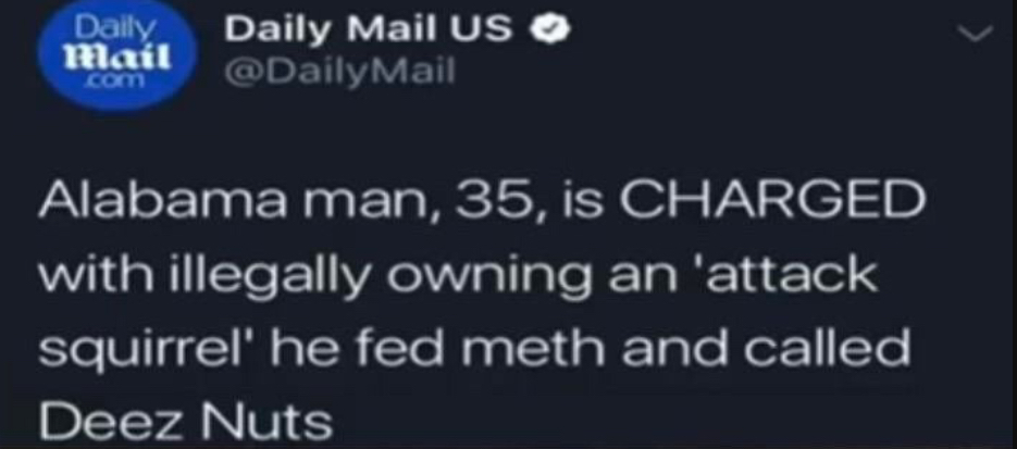 Florida Man Has Been Challenged - meme