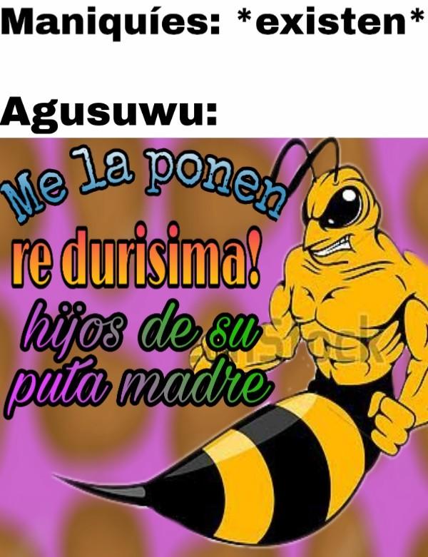 #FuerzaAgusuwu - meme