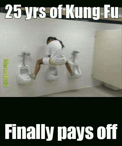 Kung Fu level: master - meme