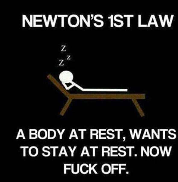newton - meme