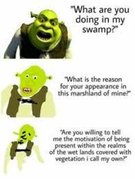 what are you doing in my swamp nibba - meme