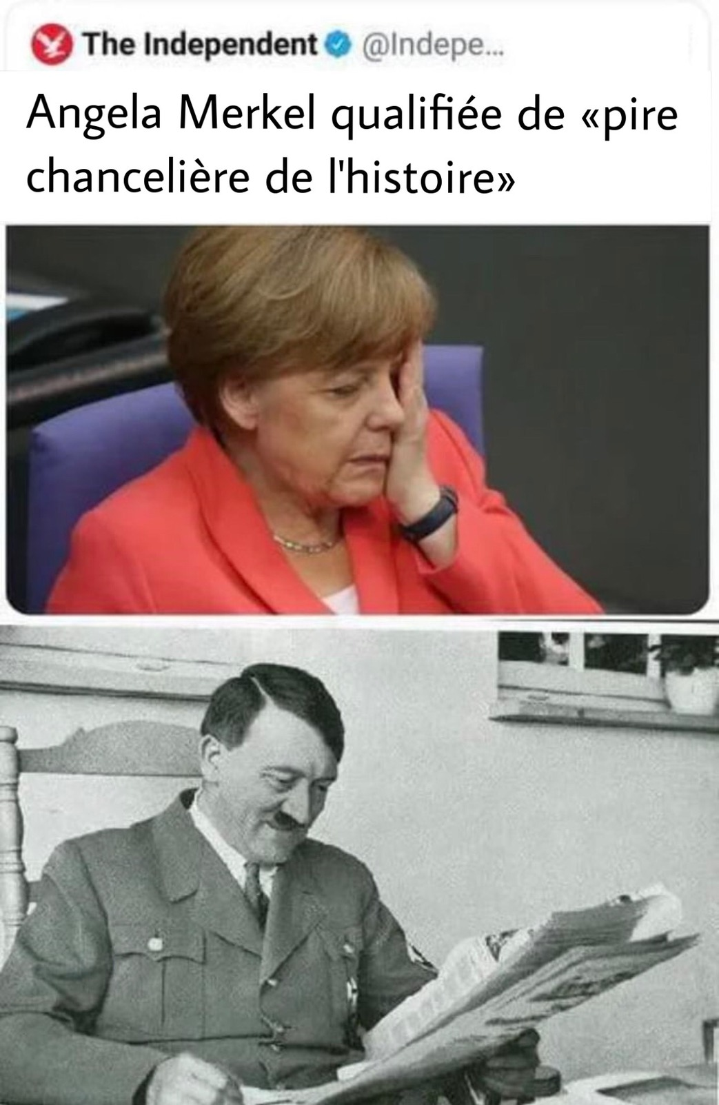 Merkel Reich - meme