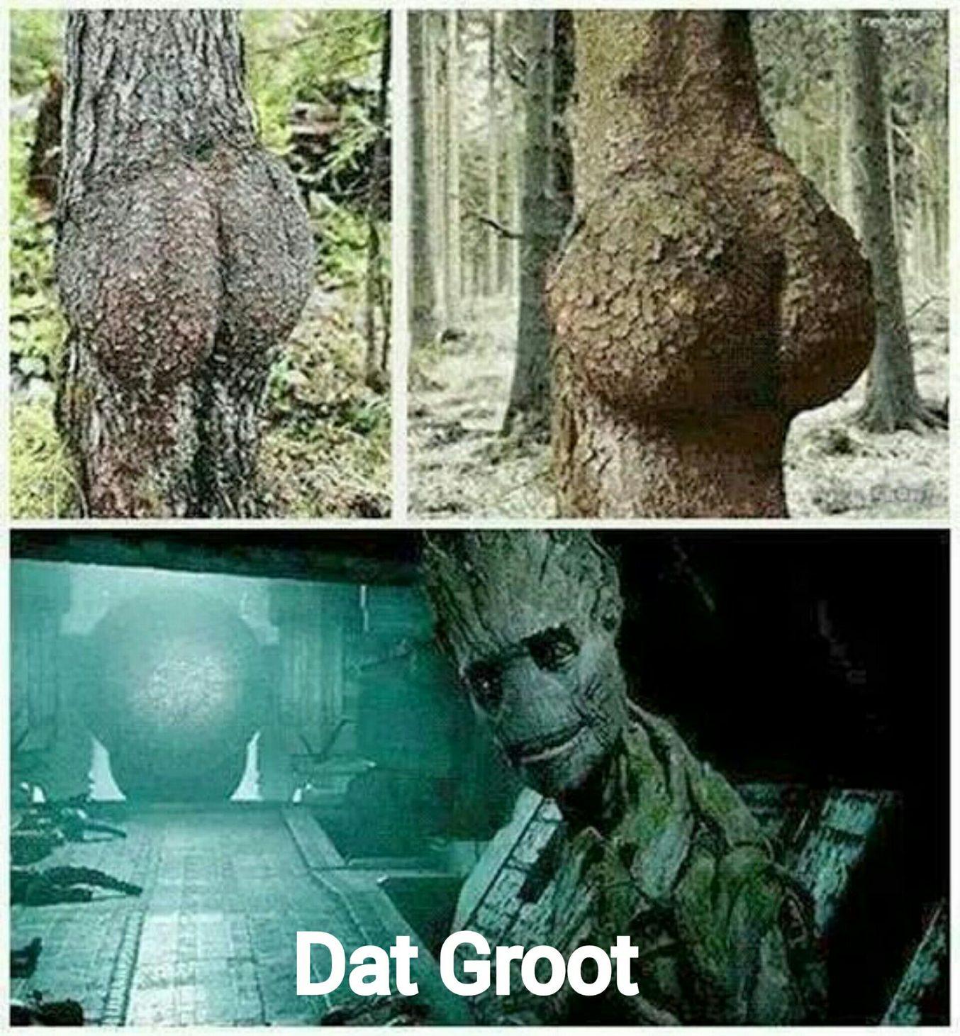 Dat Groot (dat ass) - meme