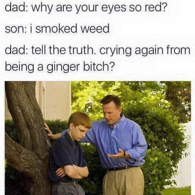 Crying again for being a ginger bitch? - meme