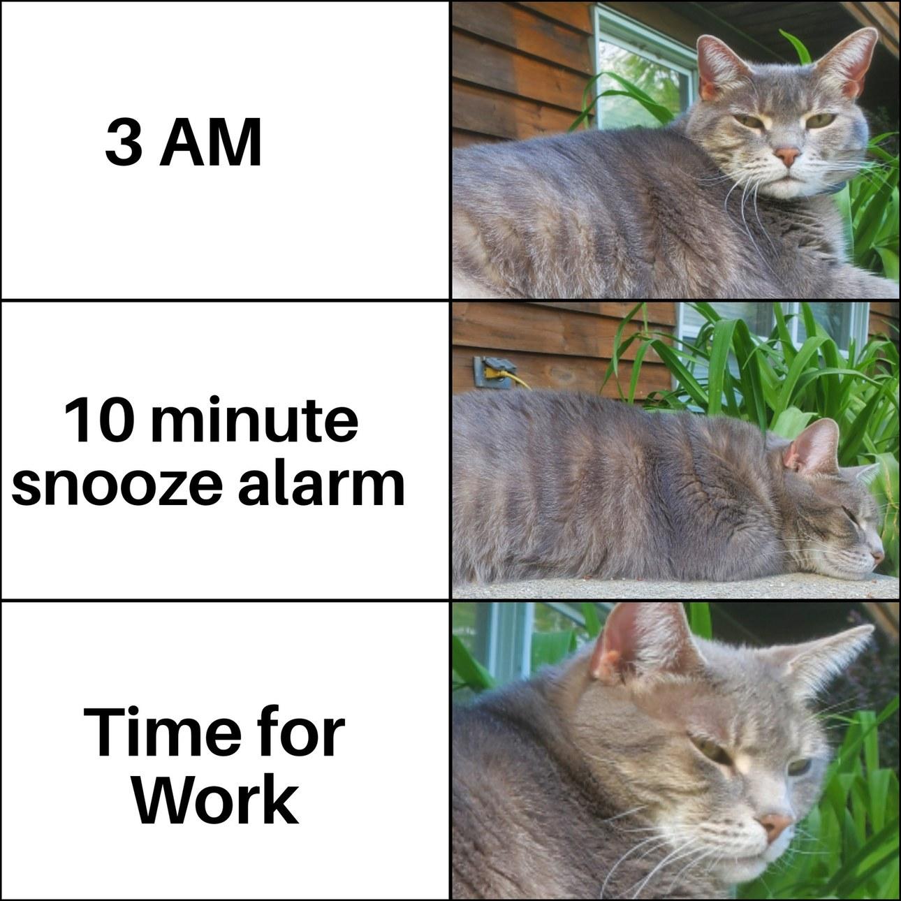 It never fails - meme