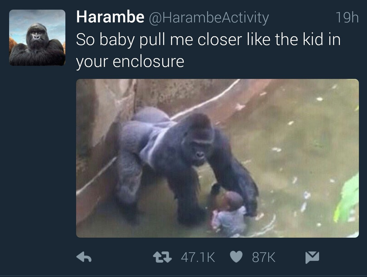 R.I.P Harambe - meme