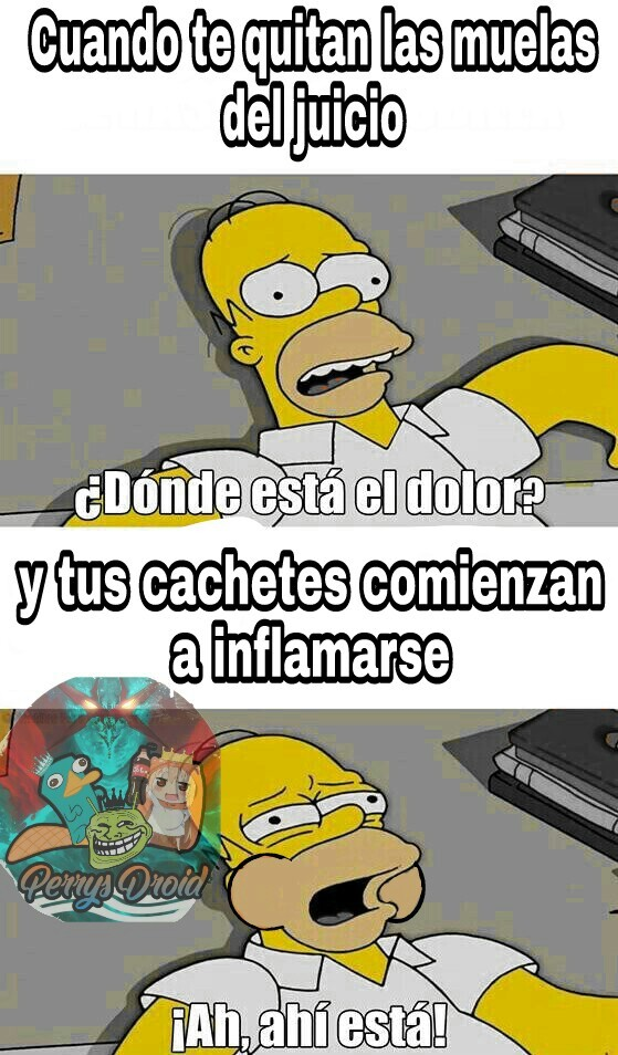 Es horrible - meme