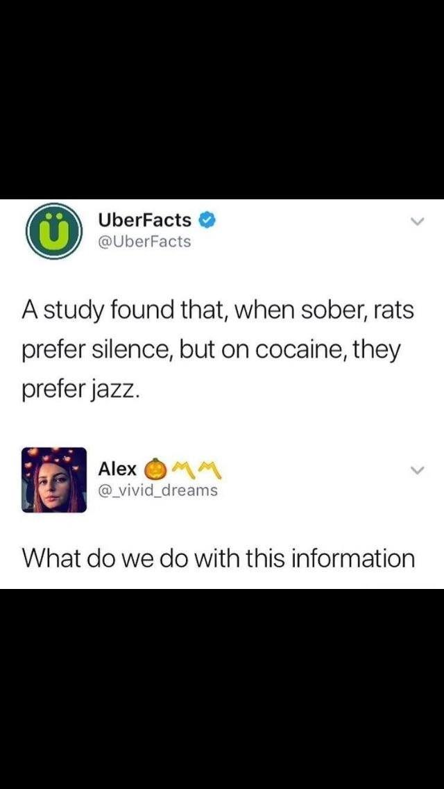 Rats prefer jazz when on cocaine - meme
