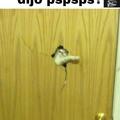 Pspsps