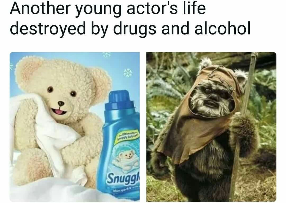 59762bf6bf6a1 the best ewok memes ) memedroid