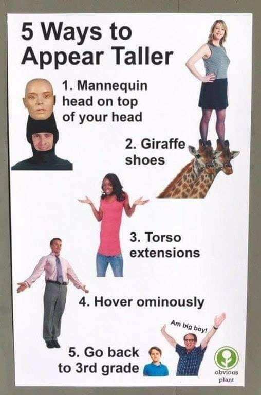 5 ways to appear taller: great tricks - meme