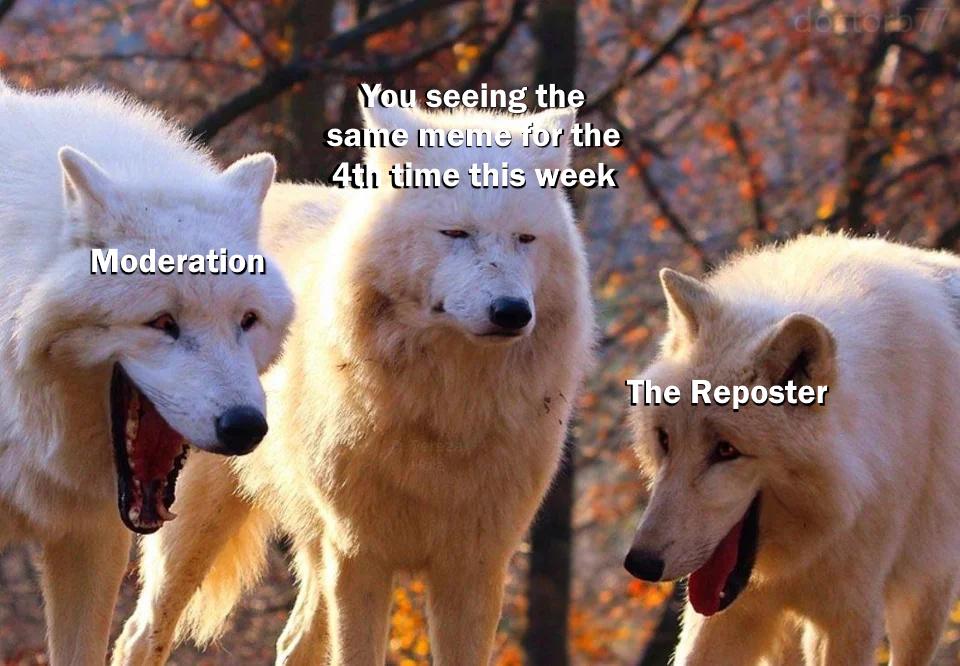 shit meme but oc
