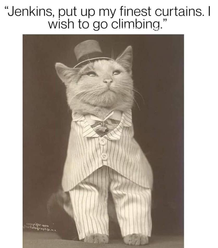 Mr Jenkins - meme