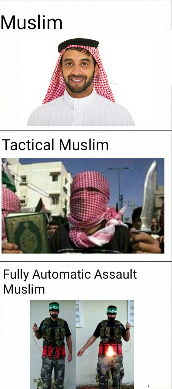 First you regulate knifes, now acid? When do you stop being cucks and just ban muslims? - meme