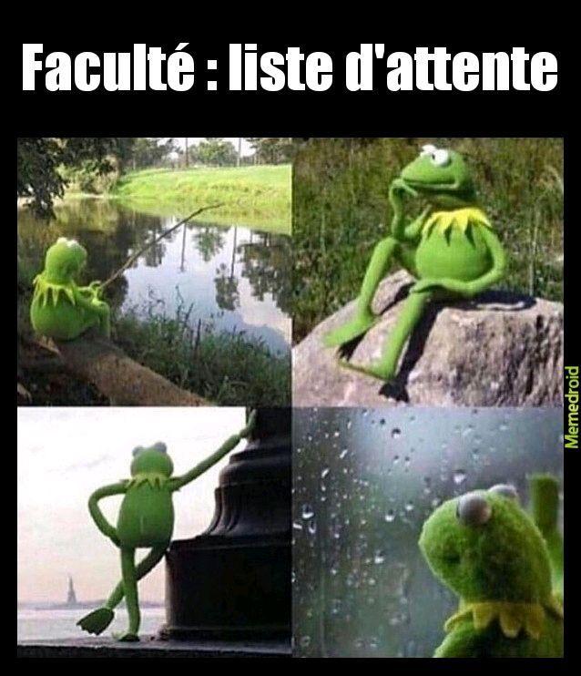 La liste d'attente parcoursup - meme