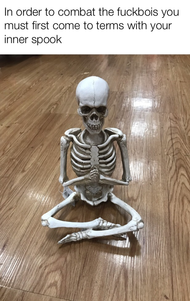 yes I know there's a price tag but that's because I'm not in the mood to pay $25.00 for a meditating skeleton - meme
