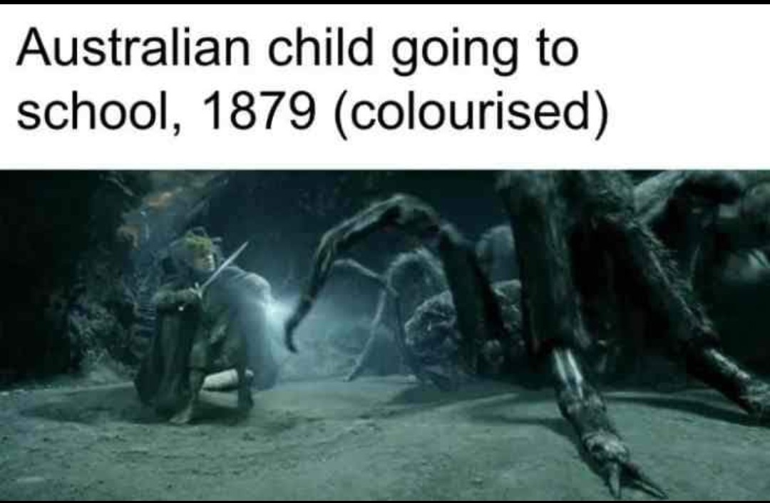 That's how I imagine Australia - meme