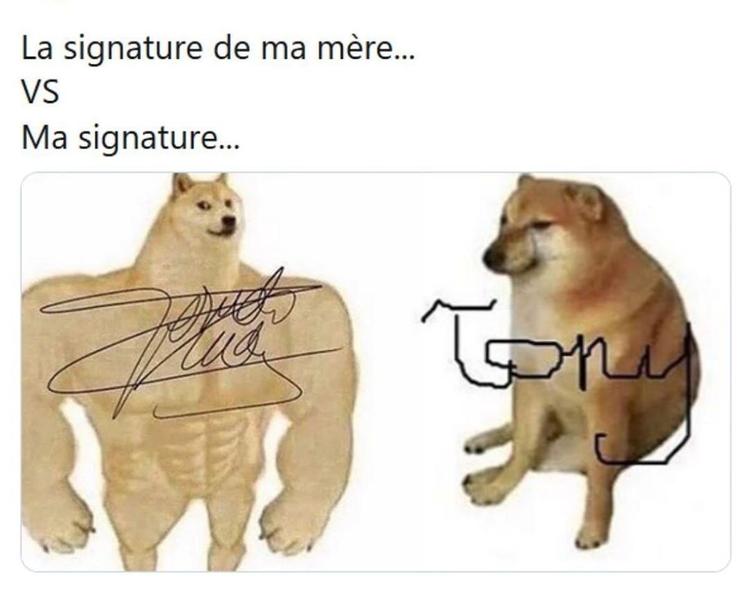 Tony - meme