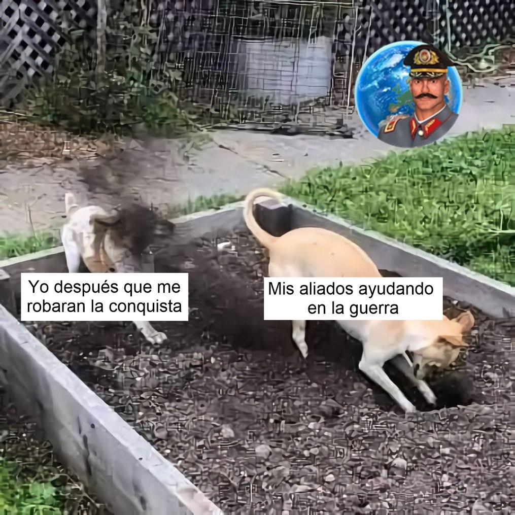 Cuak - meme