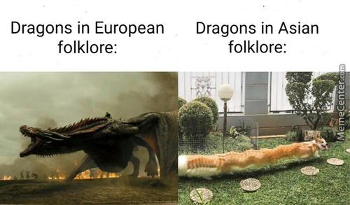 Daloon Springrolls - meme